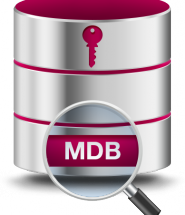 ms-access-mdb